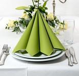 Ubrousky - Dunilin palmově zelené