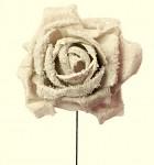 Růže pěnová zasněžená zápich - kávová - 2ks