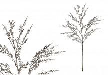 Větvička magnolie zasněžená 65cm - ivory