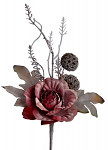 Růže zápich frost - bordo - 25 cm