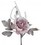 Růže rozvitá frost - narůžovělá