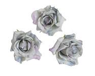 Hlavičky poupat růží - mini rozvité- krémové