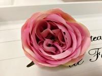 Hlavička pivoňkové růže - starorůžová