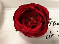 Hlavička pivoňkové růže - červená