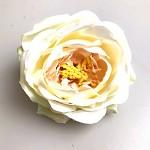 Hlavička růže Wild - krémovo-růžová