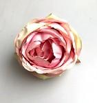 Hlavička růže Wild - starorůžová