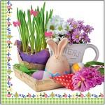 Ubrousky jarní - tulipány na kole