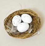Hnízdečko hnědé se 3 vajíčky a peříčky - 1ks