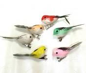 Ptáček na klipu - barevný mix - 1 ks