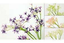 Zápich kvetoucí tráva dlouhá - fialová