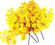 Podzimní větev s listy - bříza žlutá