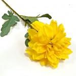 Jiřina stvol - žlutá - 58 cm