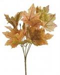 Větev podzimní javor - hnědo-zelená