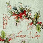 Ubrousek 40x40 cm 3V - love joy - 10 ks