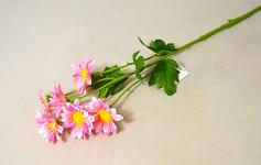 Kopretiny bílé - 32 cm