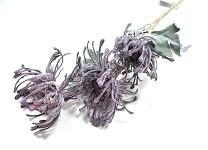 Bodlák kytice - krémový
