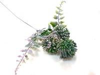 Allium mini - fialové - narůžovělé - 45 cm