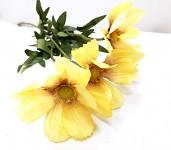 Cosmos zápich - 3 květy - žlutý