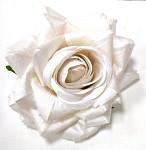 Hlavička růže perleťová 10 cm - bílá