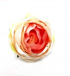 Hlavička růže Oregon - lososová