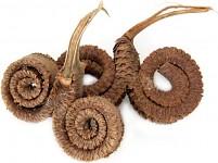 Palm ring sušený - 1 ks