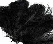Pštrosí péro - černé