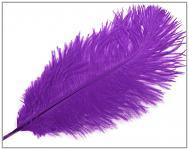 Pštrosí péro - fialové