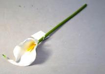 Kala mini - bílá