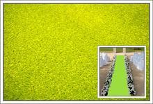 Svatební koberec - běhoun - sv.zelený - 10m