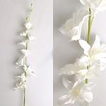 Orchidej  - dendrobium bílá - 70 cm