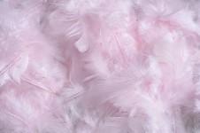 Peříčka barevná - růžová baby