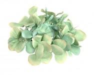 Vazbový květ hortenzie - mátový malý
