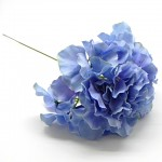 Hortenzie - stvol - sv.modrá