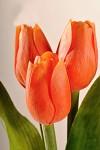 Tulipán umělý - oranžový