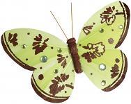 Motýl zdobený - zeleno-hnědý